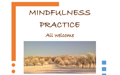 Upcoming Next Mindfulness Practice Course